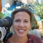 Sarah C. Sifers, Ph.D. Director